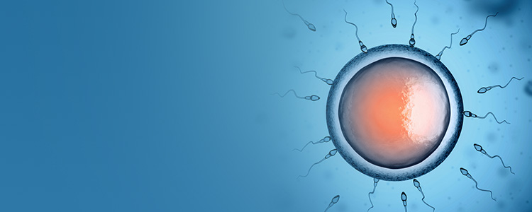 causes of female infertility